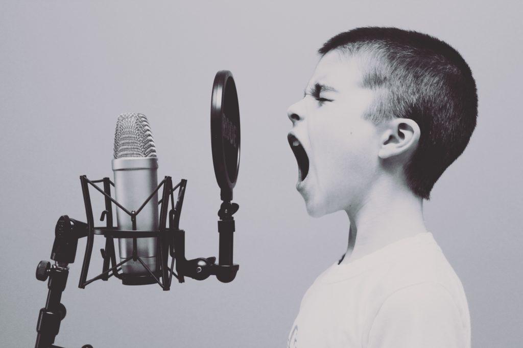 Stimme Macht Erfolg